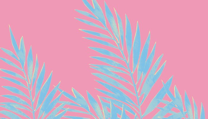 Palm Leaves Blue And Pink Pillow Sham
