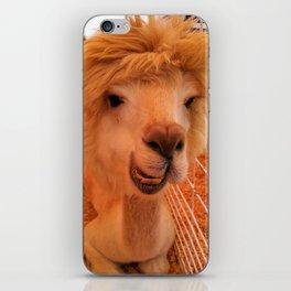 Smile! iPhone Skin
