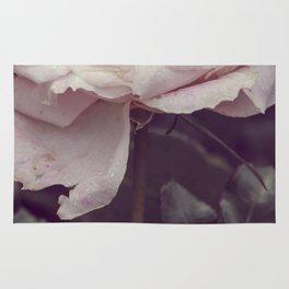 Vintage rose #3 Rug