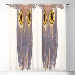 The Odd Owl Blackout Curtain