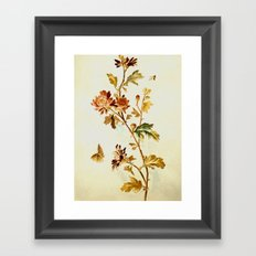 Chrysantheme Framed Art Print