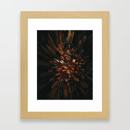 red forest in north america Framed Art Print