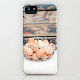 Rustic Snow Eggs iPhone Case