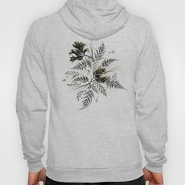 Ferns and Parrot Tulips - Black Hoody