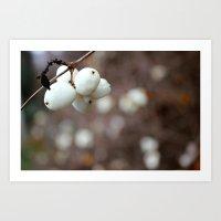 White Cluster Art Print