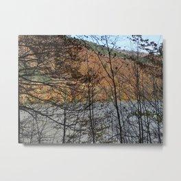 Autumm through branches Metal Print