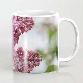 Lilacs Early Spring Coffee Mug