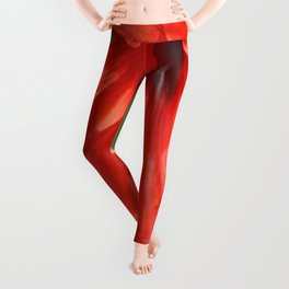 Red Petal and Anther with Pistil of Hibiscus Flower Leggings