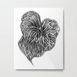 Leaf in Graphite Metal Print