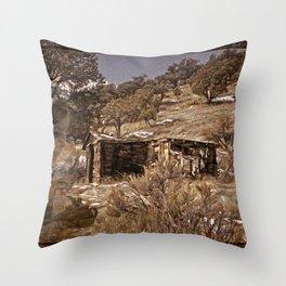 Colorado History Throw Pillow