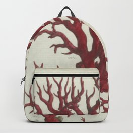 Naturalist Red Coral Backpack