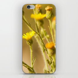 Yellows&Oranges iPhone Skin