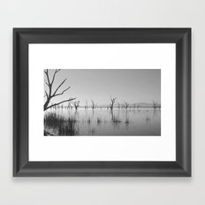 Nature's Sympathy Framed Art Print