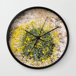 Super Bloom 7290 Paradise Joshua Tree Wall Clock