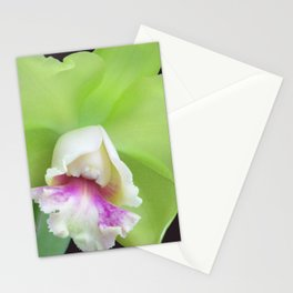 Green Cattleya Orchid Stationery Cards