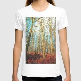 Trees in autumn light T-shirt
