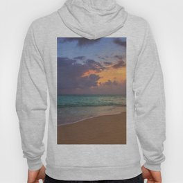 Needle in the bay Hoody