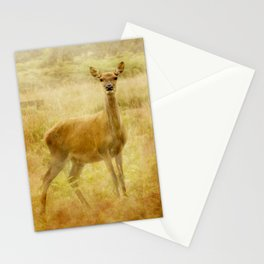 Female Red Deer Stationery Cards