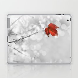 Red in the Snow Laptop & iPad Skin