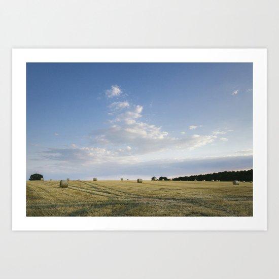 Field of round straw bales at sunset. Norfolk, UK. Art Print