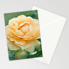Little Rose Stationery Cards