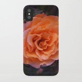 Holland Park Rose iPhone Case