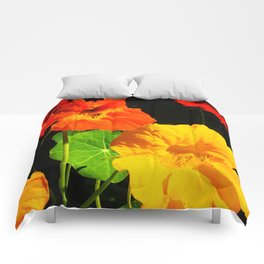 Spring is Here Two Comforters