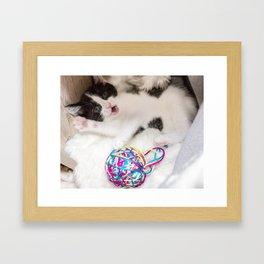 Kitten with her playball Framed Art Print