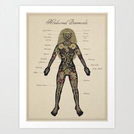 Medicinal Botanicals Art Print
