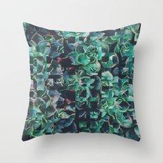 Fractions 06 Throw Pillow