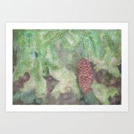Spruce Cone Art Print