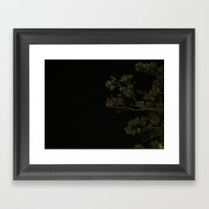 Branches at Night Framed Art Print