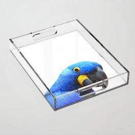 Blue Parrot Portrait Acrylic Tray