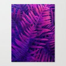 Ferns#2 Canvas Print