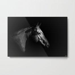 BW Work Horse Metal Print