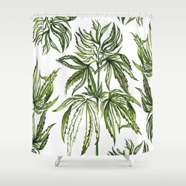 Patent #6630507 Shower Curtain