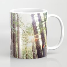 Sunlight Through Redwoods Mug