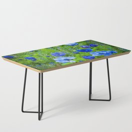 Spring Blues Coffee Table