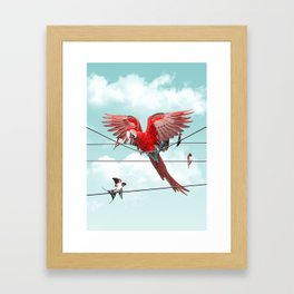 COLORFUL STRANGER Framed Art Print