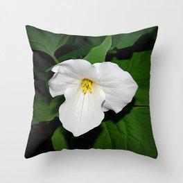 Trillium in the spotlight Throw Pillow