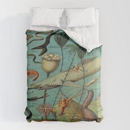 Strange Unique Ocean Animals Vintage Scientific Illustration French Language Encyclopedia Lithograph Comforters