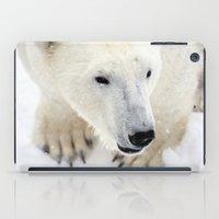 polar bear iPad Cases featuring Polar Bear by MVision Photography