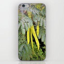 Bean Palms iPhone Skin