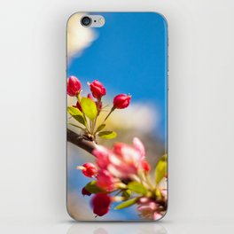 Coming Out To Bloom iPhone Skin
