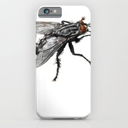 Pretty Giant black Fly with Bristles iPhone Case