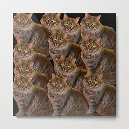 12 cats, painterly Metal Print