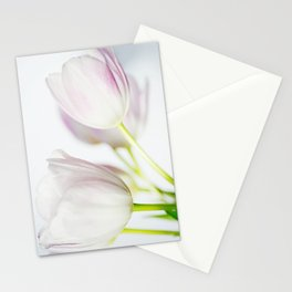 Gentle Touch Stationery Cards