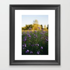 Pretty n Purple Framed Art Print