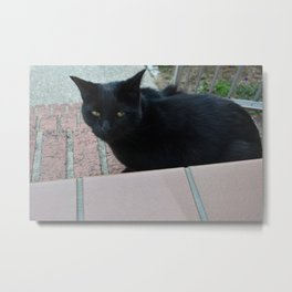 black cat cross your path Metal Print