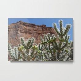 Canyon de Chelly Cholla Metal Print